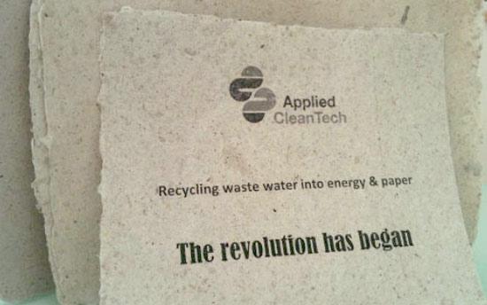 post-papel-higienico-usado-vira-papel-de-parede