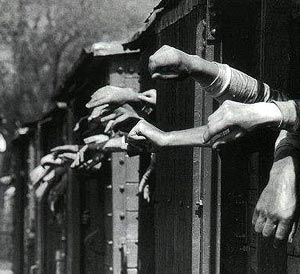 holocausto3